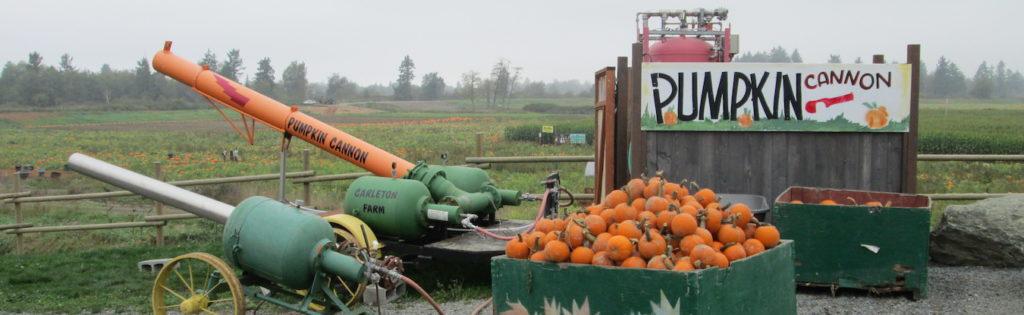Pumpkin Cannon 2